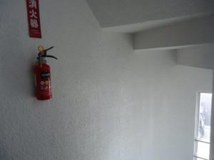 階段室壁-塗装後